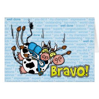 Bravo - skydive Tandem Karte