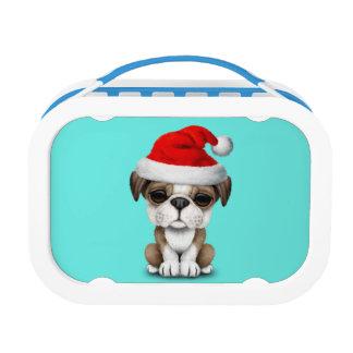 Britischer Bulldoggen-Welpen-Hund, der eine Brotdose
