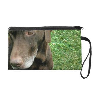Brown-Hund