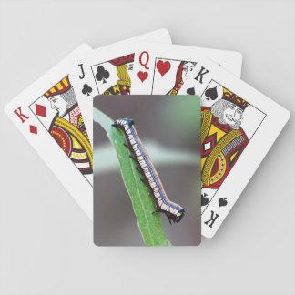 Brown-Mit Kapuze Owlet-Raupen-Spielkarten Spielkarten