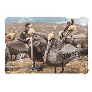 Brown-Pelikane an Land. La- Jollabucht, San Diego iPad Mini Hüllen