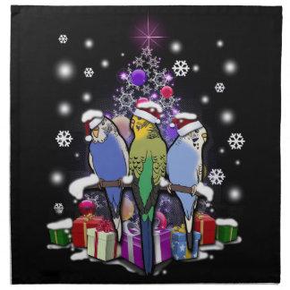 Budgerigars mit Weihnachtsgeschenk und Stoffserviette