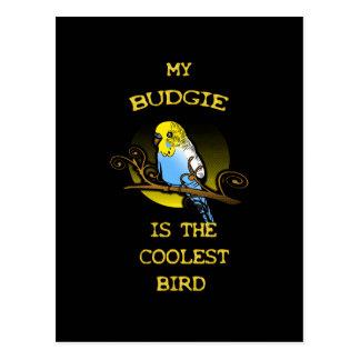 Budgie ist der coolste Vogel Postkarte