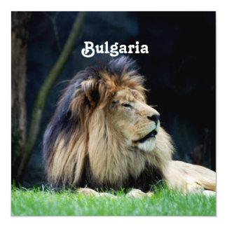 Bulgarien-Löwe Quadratische 13,3 Cm Einladungskarte