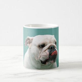 Bulldogge, Hundelustiges Gesicht, das heraus Tasse
