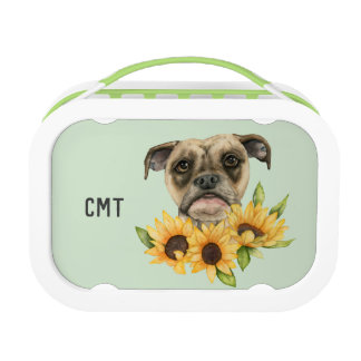 Bulldoggen-Mischung mit Sonnenblumen | addieren Brotdose