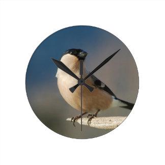Bullfinch Dompfaff (Pyrrhula pyrrhula) by GLINEUR Uhr