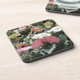 Bunte Aster-Blumen mit gedämpften Farben Getränkeuntersetzer