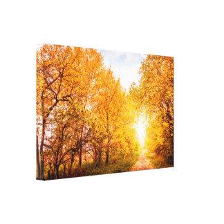 Bunte Bäume durch die Straße im Herbst Leinwanddruck