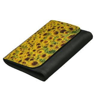 Bunte gelbe Sonnenblumen, schwarze lederne