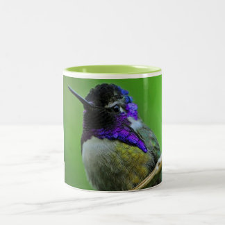 Bunte Kolibri-Tasse Zweifarbige Tasse