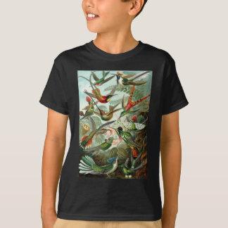 Bunte Kolibris durch Ernst Haeckel T-Shirt