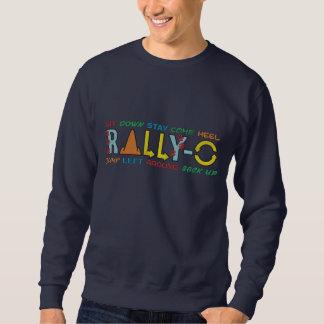 Bunte Kundgebung-O Bestickter Pullover