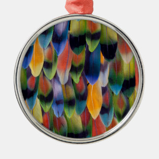 Bunte Lovebirdpapageienfedern Silbernes Ornament