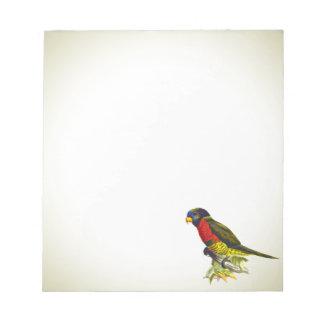 Bunte Vintage Papageienillustration Notizblock