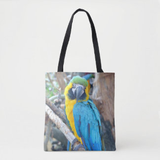 Bunter Macaw-Papagei