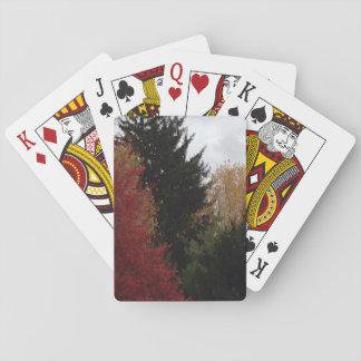 Buntes Herbst-Baum-Foto-Spielkarten Spielkarten
