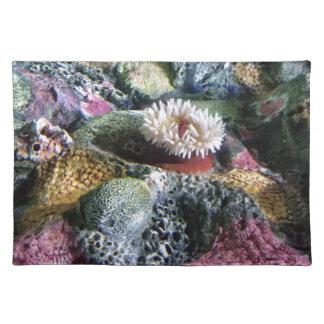 Buntes Unterwasseraquarium-Korallenriff Stofftischset