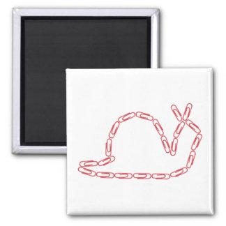 Büroklammer-Schnecke-Magnet Quadratischer Magnet