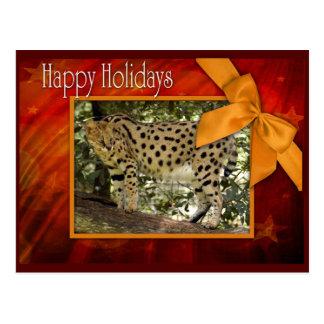 c-2011-african-serval-043 postkarte