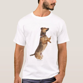 Canis familiaris 2 T-Shirt
