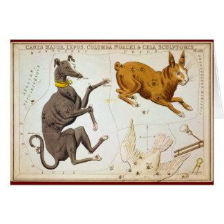 Canis-Major, Lepus, Columba Noachi u. Cela Grußkarte