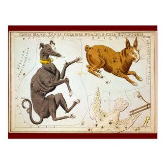 Canis-Major, Lepus, Columba Noachi u. Cela Postkarten