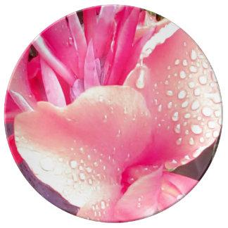 Canna Lilien-dekoratives Porzellan-Platten-Rosa Teller Aus Porzellan