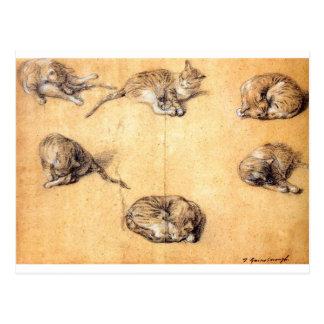 cat-clip-art-8 postkarte