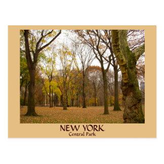 Central Park-Postkarten New- Yorkpostkarten-NYC Postkarte