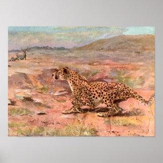 Cheetah und Antilopen durch Schwan, Vintages Poster