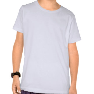 Chicagoland Uyf Joliet Raben Hemden