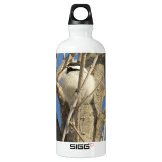Chickadee 02 wasserflaschen