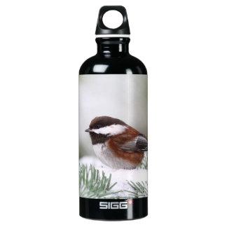 Chickadee im Schnee Aluminiumwasserflaschen