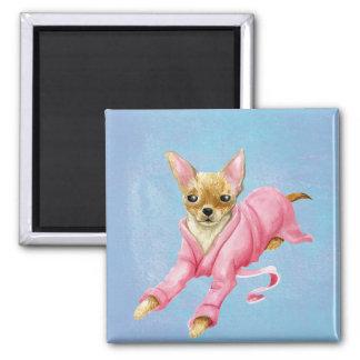 Chihuahua in einem quadratischer magnet