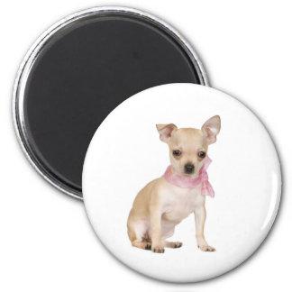 Chihuahua ist es eine Chihuahua-Sache Runder Magnet 5,1 Cm