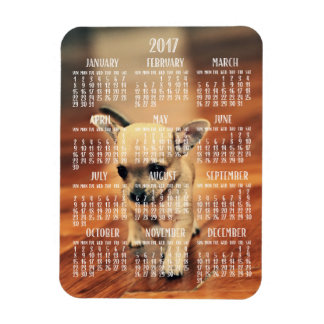 Chihuahua-Kalender-Foto-Magnet 2017 3x4 klein Magnet
