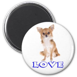 Chihuahua-langer Haar-Welpen-Hund - blaue Liebe Runder Magnet 5,1 Cm