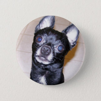 Chihuahua Runder Button 5,7 Cm