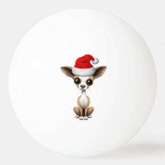 Chihuahua-Welpe, der eine Weihnachtsmannmütze Tischtennis Ball