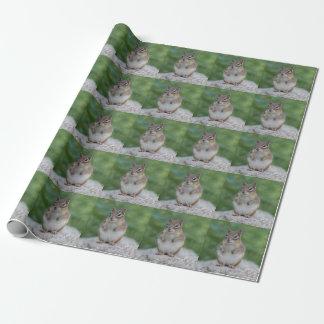 Chipmunk, der aufrecht sitzt geschenkpapier