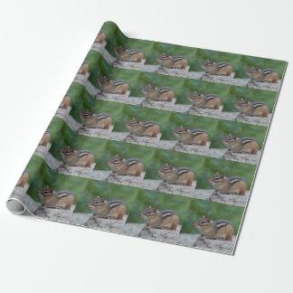 Chipmunk Geschenkpapier