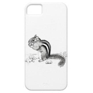 Chipmunk iPhone 5 Hüllen