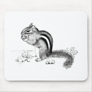 Chipmunk Mousepads