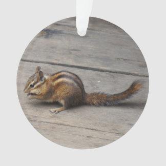 Chipmunk-Verzierung Ornament