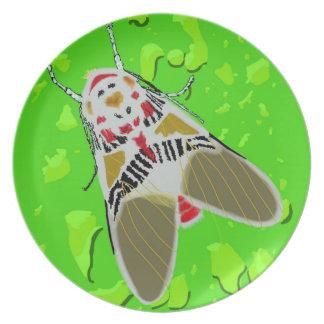 Clown-Motte Teller
