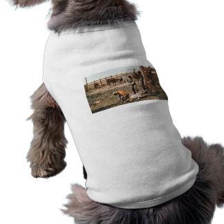 Colorado, das 1904 einbrennt ärmelfreies Hunde-Shirt