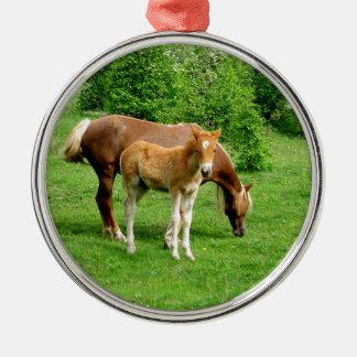 Colt und seine Mutter Rundes Silberfarbenes Ornament