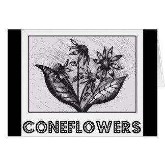 Coneflowers Karte