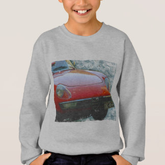 Coole europäische Auto-Alpha-Romeo-Spinne Sweatshirt